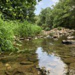 Vue rivière